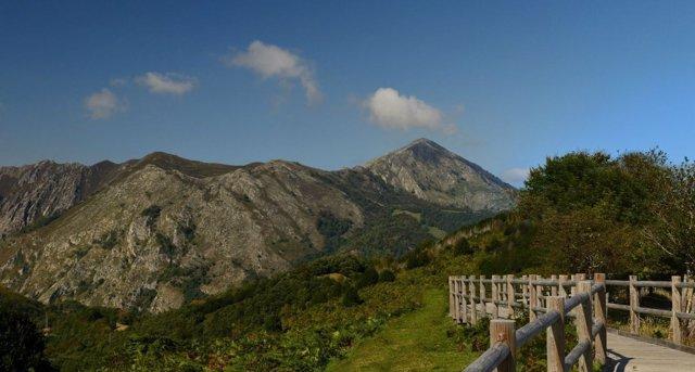 Parque natural de Ponga, Asturias