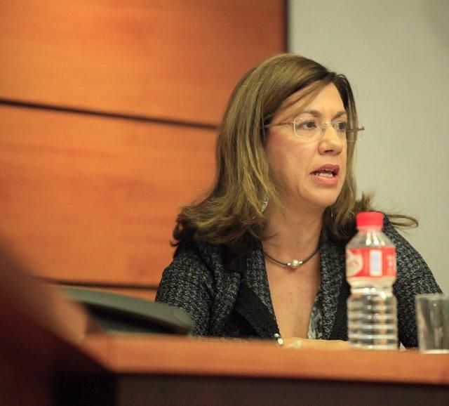 Cristina Gómez, Cermi