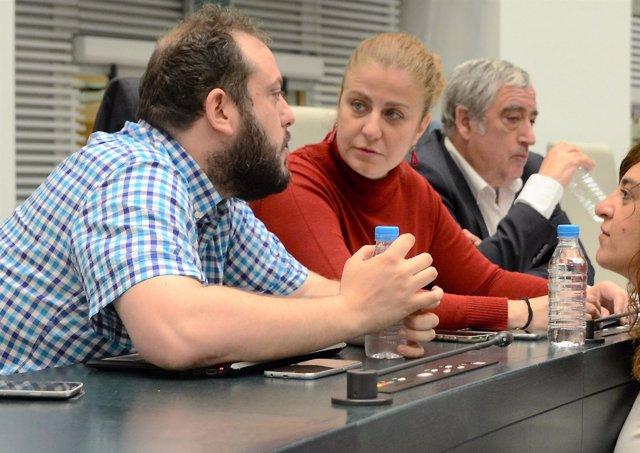 Guillermo Zapata asiste al pleno del ayuntamiento de Madrid