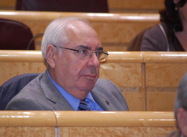 Vicente Álvarez Areces, en el Senado