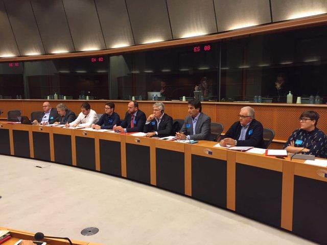 La delegación del PSOE-RM, en el Parlamento Europeo