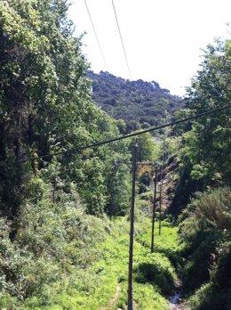 Endesa ha renovado 60 postes eléctricos de una línea de Tordera