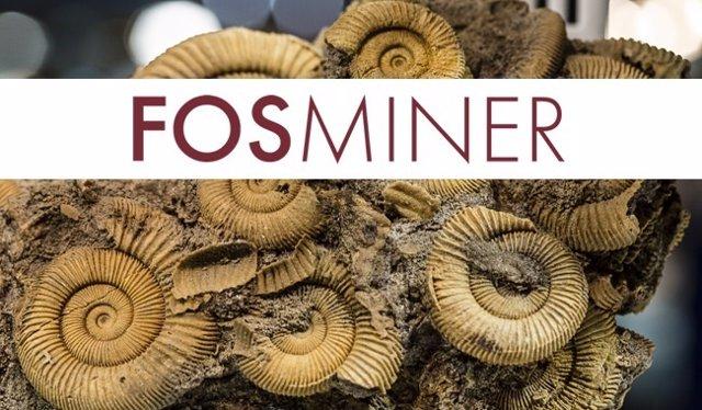 Fosminer