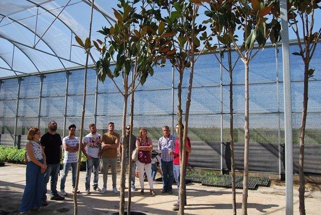 El vivero de don benito suministra plantas a 160 for Viveros en badajoz