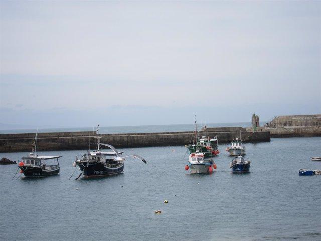 Pesca, puerto, mar, Tapia de Casariego, Asturias
