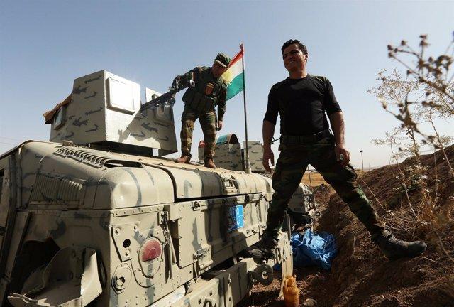 Fuerzas iraquíes se concentran a las afueras de Mosul