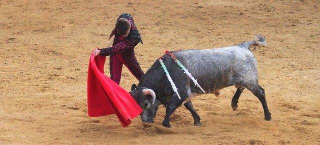 Lance en una corrida de toros