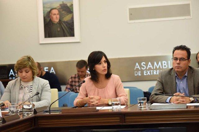 Comisión d eEducación