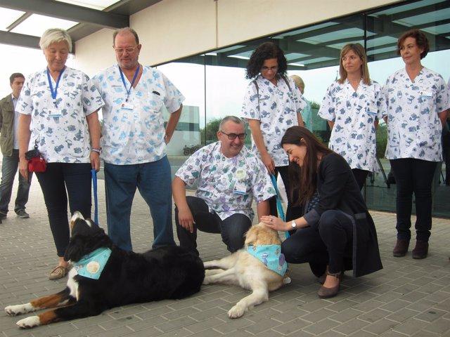 Los perros 'Alma' y 'Nana' del programa Can de la mano