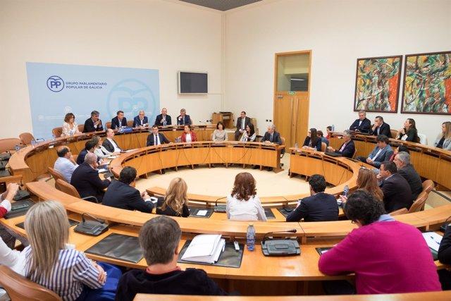 Reunión del Grupo Parlamentario del PPdeG.