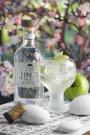 Foto: España, tercer país donde más gin tonics se consumen del mundo