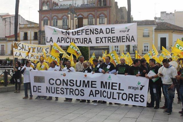Fotografías Manifestación De Apicultores En Mérida