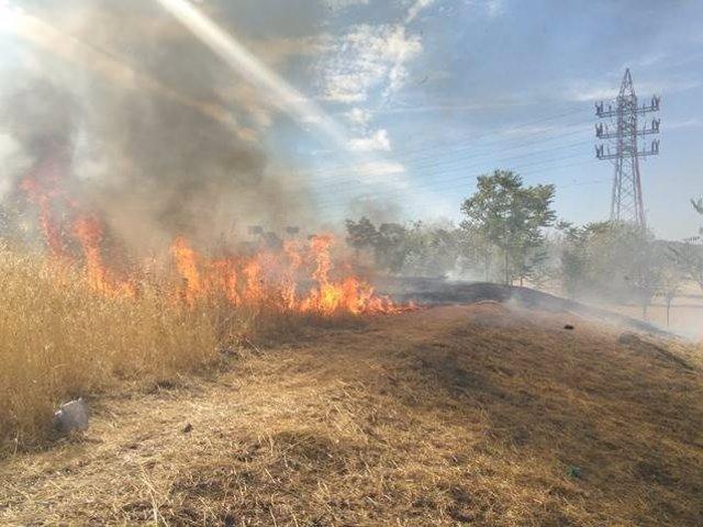 Imágenes del incendio en la zona cercana al parque