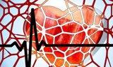 Un estudio evidencia que los vasos sanguíneos de los tumores crecen como 'tsunamis'