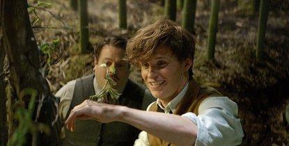 Animales fantásticos y dónde encontrarlos: 60 nuevas imágenes del esperado spin-off de Harry Potter (WARNER BROS)