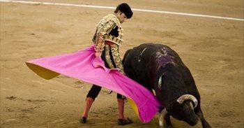 """Los taurinos avisan: Los toros vuelven a Cataluña """"igual que antes"""" y..."""