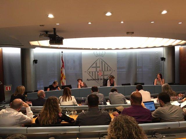 Comisión de Derechos Sociales del Ayuntamiento de Barcelona