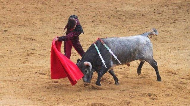 El TC devuelve las corridas de toros a Cataluña