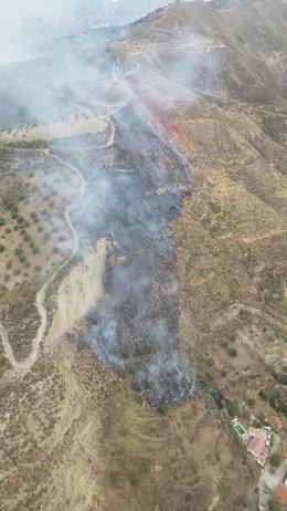 Incendio en Pinos Genil (Granada)