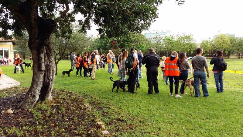 El centro de protección animal de Son Reus celebra una jornada de puertas abiertas