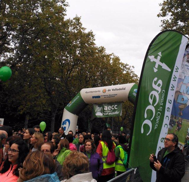 Cerca de 35.000 personas se dan cita en V carrera contra el cáncer de Valladolid
