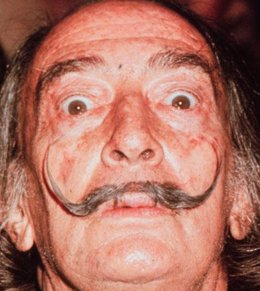 Pintor Español Salvador Dalí