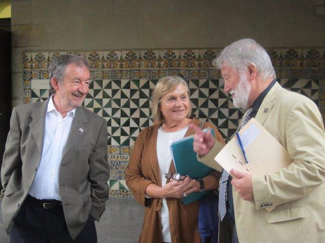 V.Pitarch, M.Teresa Cabré, J.Ros (IEC)
