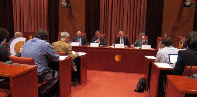 El director adjunto de la OAC, Joan Xirau, validado por el Parlament en la CAI