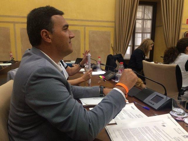 El diputado andaluz de Ciudadanos Carlos Hernández