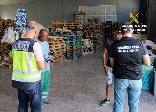 Imagen de la operación desarrollada por Guardia Civil y Policía Nacional