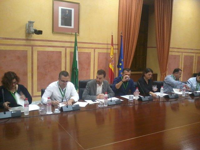 Firma del Manifiesto de Oviedo en el Parlamento andaluz con cargos de IU