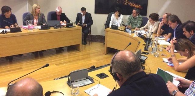 Comisión en la Juntas Generales de Bizkaia