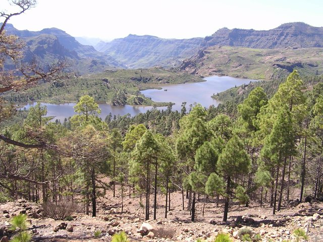 Imagen De La Presa De Las Niñas En Gran Canaria Desde Inagua.