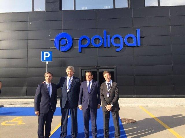 Planta de Poligal en Portugal
