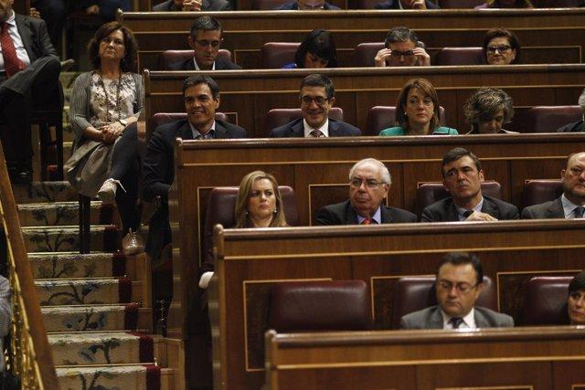 Pedro Sánchez sigue desde su escaño el debate de investidura