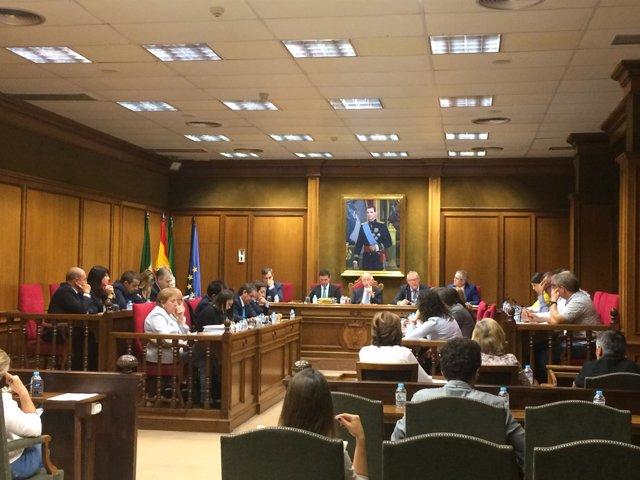 El pleno da luz verde al Convenio Colectivo del Personal de Diputación.