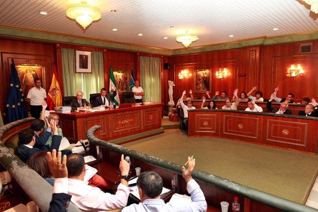 Pleno del Ayuntamiento de Marbella de octubre