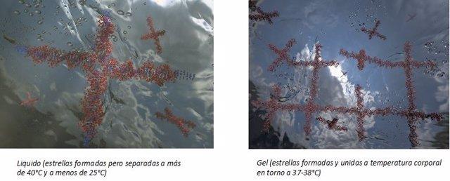 Estrellas de secuencias de  ADN en estados líquido y sólido