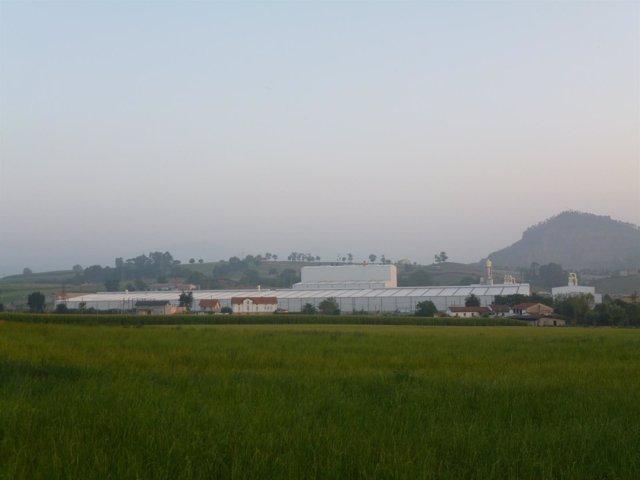 Planta Fermacell en Orejo (antigua GFB)