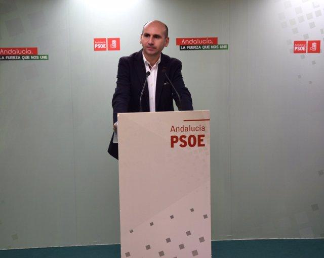 Francisco Conejo PSOE-A política secretario institucional málaga