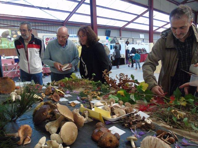 Paula valero visita la Feria de la Miel en Boal.