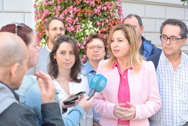 La presidenta del grupo de Podemos Andalucía, Carmen Lizárraga