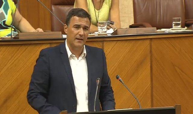 El diputado de Ciudadanos por Málaga en el parlamento andaluz, Carlos Hernández