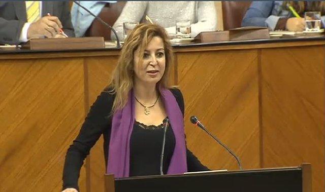 Carmen Lizárraga ante el Pleno del Parlamento andaluz