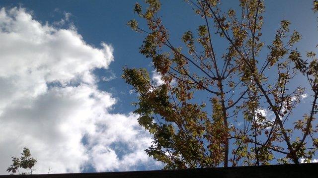 Nubes y otoño