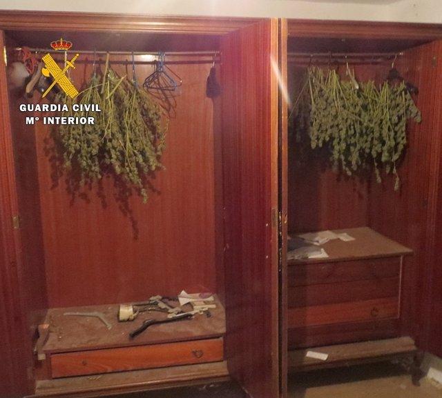 Secadero de marihuana