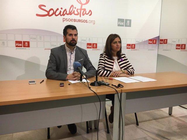 Tudanca en Burgos