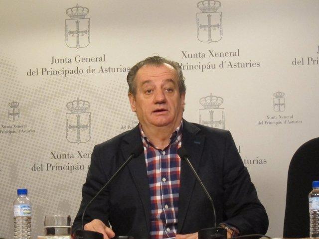 El portavoz de Ciudadanos en la Junta General, Nicanor García