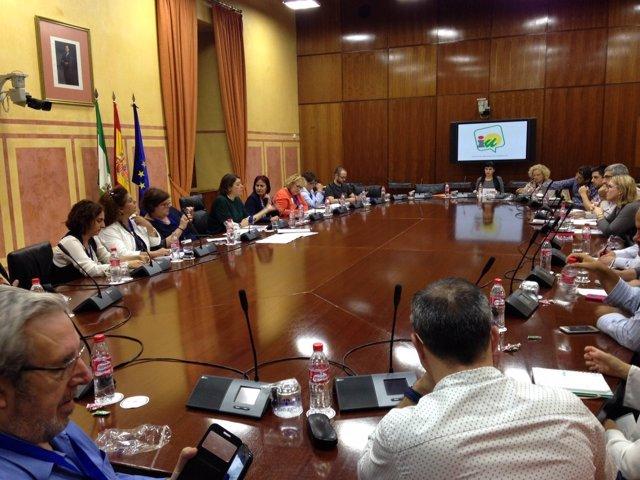 Reunión de IU con agentes sociales