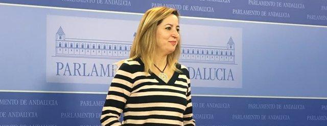 La presidenta del grupo parlamentario Podemos, Carmen Lizárraga